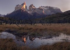 The Cuernos (Andrew G Robertson) Tags: patagonia cuernos horns mountain reflection torres del paine chile dawn sunrise