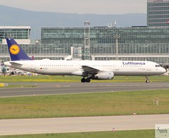 Lufthansa A321-131 D-AIRF taxiing at FRA/EDDF (AviationEagle32) Tags: frankfurt frankfurtairport fra eddf flughafen flughafenfrankfurt germany deutschland airport aircraft airplanes apron aviation aeroplanes avp aviationphotography avgeek aviationlovers aviationgeek aeroplane airplane airbus planespotting planes plane flying f flickraviation flight vehicle tarmac lufthansagroup lufthansa staralliance airbus321 a321 a321100 a321131 dairf