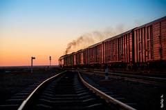 Red train ... (N.Batkhurel) Tags: season sky sunset trains trainspotting locomotive sunsettime railway railfan gobi mongolia monrailpic ngc nikon nikondf nikkor 24120mm