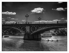 Le pont Isabelle II. Séville. (francis_bellin) Tags: olympus espagne ciel bateaux passant nuages pont pontisabelleii netb guadalquivir noiretblanc monochrome contrejour bw blackandwhite andalousie passants passantes rameurs ville séville 2019