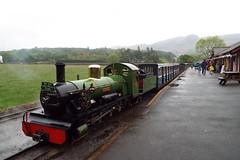 DSCF7233 (Steve Guess) Tags: laal ratty re ravenglass eskdale cumbria england gb uk steam narrow gauge railway 15inch 460mm riverirt engine loco locomotive dalegarth boot