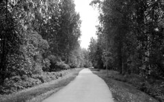 Road to Summer (Sonofsono) Tags: film finland black bw white graflex speedgraphic largeformat forest road