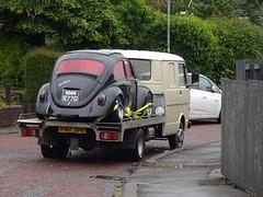 VW Transporter & Beetle, Cedar Walk, Upper Cwmbran 14 June 2019 (Cold War Warrior) Tags: vw volkswagen beetle transporter kaefer cwmbran