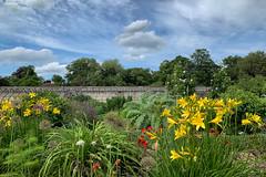 June Garden (Roantrum) Tags: bedfordshire lutonhoowalledgarden roantrum luton england unitedkingdom