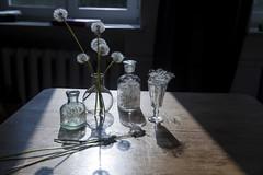 (helenarostunova) Tags: dandelion fluffy bottle silhouette shadow reflection fluff glass plant flower seeds postcard decoration summer crystal bouquet round table wood wooden card design seed vine