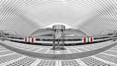 Bahnhof Liège-Guillemins (Der Hamlet) Tags: bahnhof liegeguillemins santiago calatrava lüttich bahnsteig zug colorkey stahl glas beton belgien wallonie moderne bögen linien monochrome licht schatten infrastruktur