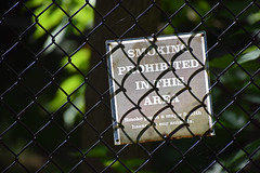 And of Humans! (MTSOfan) Tags: sign chainlink fence hff nosmoking healthhazard epz