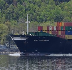 MSC Shannon - IMO 8913423 (J. Trempe 3,960 K hits - Merci-Thanks) Tags: stefoy quebec canada ship navire fleuve river stlaurent stlawrence conteneur container msc shannon