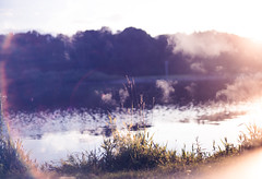 (cara zimmerman) Tags: canonr doubleexposure eaglecreekpark clouds lake plants dreamy