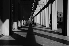 Shadows in the Colonnade (John of Witney) Tags: colonnade sub shadows concrete building architecture fiat lingotto turin torino italy italia lacittàmetropolitanaditorinovistadavoi