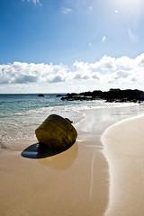 Galápagos Adventures (Simon Caunt) Tags: galapagosarchipelago galapagos gadventures galapagosmarinereserve galápagos unesco unescoworldheritage southamerica equador pacificarchipelago wildlife nature naturalworld naturereserve 240700mmf28nikkor afsnikkor2470mmf28 d800 nikond800 nikoncameras nikon nikondslr ©simon caunt