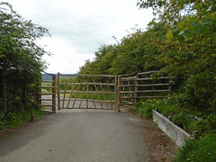 """Large Cleft Gate & Wings • <a style=""""font-size:0.8em;"""" href=""""http://www.flickr.com/photos/61957374@N08/48061077111/"""" target=""""_blank"""">View on Flickr</a>"""