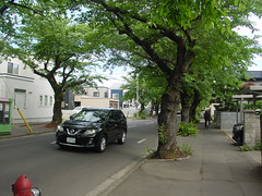 A morning street (しまむー) Tags: sony cybershot dscs70 s70 carl zeiss variosonnar 721mm f2