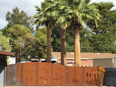 Phoenix AZ ~ unique fencing (karma (Karen)) Tags: phoenix arizona driveways fences trees palms hff iphone