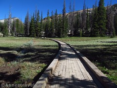 Curving Boardwalk (annestravels2) Tags: ibantiklake utah uintamountains boardwalk trail