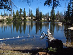 Unnamed Pond (annestravels2) Tags: ibantiklake utah uintamountains lake