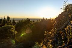 Rund um den Bilstein (janeway1973) Tags: bilstein hessen germany deutschland natur nature wald forest forst trees bäume sundown sonnenuntergang view aussicht