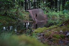 Kyrkö mosse (I) (kristian.warnholz) Tags: vehicle car swamp forest tree water