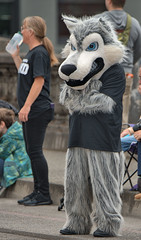 Hairy Wolf (Scott 97006) Tags: costume person fur wolf parade audience street cute
