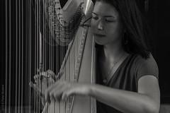 Harpiste (Pieter Musterd) Tags: muziek harpiste harp straatmuzikant pietermusterd musterd canon pmusterdziggonl nederland holland nl canon5dmarkii canon5d denhaag 'sgravenhage thehague lahaye