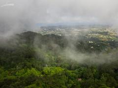 Sintra (Sachada2010) Tags: sachada sachada2010 javier martin paisaje landscape monte bosque forest olympus em10 ii lumix 14mm nubes niebla fog clouds sintra palacio palace da pena portugal