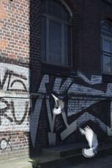 Urban Birds (youdoph) Tags: street urban city bird architecture wall