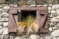 Aulus-les-Bains (Ariège) (PierreG_09) Tags: ariège pyrénées pirineos couserans occitanie midipyrénées auluslesbains aulus fenêtre grange herbe plante