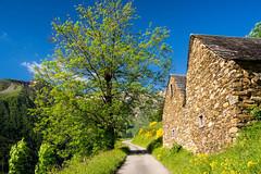 Balade aux Bouches d'Aula (Ariège) (PierreG_09) Tags: ariège pyrénées pirineos couserans occitanie midipyrénées montagne aula cabane grange piste route bouchesdaula