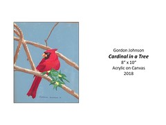 "Cardinal in a Tree • <a style=""font-size:0.8em;"" href=""http://www.flickr.com/photos/124378531@N04/48061949271/"" target=""_blank"">View on Flickr</a>"