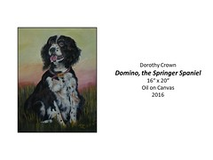 "Domino, the Springer Spaniel • <a style=""font-size:0.8em;"" href=""http://www.flickr.com/photos/124378531@N04/48061949506/"" target=""_blank"">View on Flickr</a>"