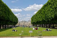 France - Paris - Le Luxembourg - retour du soleil (jeanlouispoirierphotographie) Tags: france paris jardin parc arbres pelouse personnes