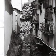 小川 (Architecamera) Tags: blackwhite blackandwhite snap kamakura film