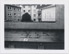 (PALEXX) Tags: polaroidlandcamera190 polaroid665 polapan665 iso80 bw expiredfilm instanfilm peelapartfilm polaroid monochrome blackwhite polaroidlandcamera