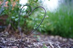Rusty heart (Tommi_O) Tags: sony zeiss distagon t fe 35 mm f14 za sel35f14z a7iii ilce7m3