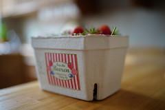 Hidden strawberries (Tommi_O) Tags: sony zeiss distagon t fe 35 mm f14 za sel35f14z a7iii ilce7m3