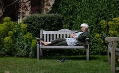 IMG_9140 (Cristina hecks) Tags: bristol giardino pace preghiera ricordo