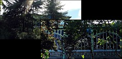 3 - Nogent-sur-Marne - Pavillon Baltard (melina1965) Tags: panasonic lumix dmctz57 îledefrance valdemarne juin june 2019 nogentsurmarne mosaïque mosaïques mosaic mosaics collages collage façade façades printemps spring ferronnerie ironwork ironworks fer iron ciel sky nuage nuages cloud clouds reflet reflets reflection reflections arbre arbres tree trees
