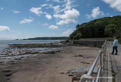 Coppet Hall to Wisemans Bridge 2019 06 06 #14 (Gareth Lovering Photography 5,000,061) Tags: tenby saundersfoot wisemansbridge seaside wales beach sonyrx10m4 sonyrx10iv garethloveringphotography