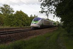 TGV TMST 3213/3224 (Thomas-60) Tags: tgv tmst eurostar izy ferroviaire train