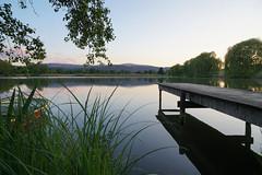 Abendruhe / calm evening (Judith Noack) Tags: abend evening stille see silence lake wernigerode steg brocken harz spiegelung reddeberteich teichmühle