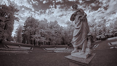 X-A1 2019-06-13 027 (linebrell) Tags: 7artisans 75mm fisheye pavlovsk monochrome infrared 720nm