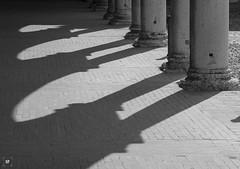 Palazzo Ducale di Mantova (Sancho Fotografia) Tags: mantua mantova lombardia turismo arte historia palacio nikon d7200 italia viajar historiadelarte arquitectura blancoynegro renacimiento