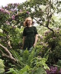 (Karl Holmberg) Tags: porträtt trädgård växter natur botanik rododendron