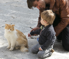 Child and cat (dramadiva1) Tags: dubrovnikcatchildfatherfamily