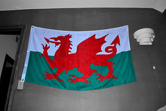 The Dragon (165/365) (robjvale) Tags: 365the2019edition 3652019 day165365 14jun19 project365 nikon d3200 flag wales dragon werehere wah hereios gift memory swimming