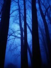Anochece en Ovejería. (nabirralover) Tags: osorno otoño