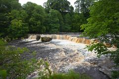 Aysgarth Falls Wensleydale (Adam Swaine) Tags: wensleydale waterfalls waterways northeast yorkshire northyorkshire river rivers riverure england english englishrivers trees woodland nationaltrust uk ukcounties rural beautiful canon walks thedales