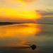 201905 Seabrook Island-02540.jpg
