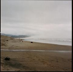 (gilbert terrazas) Tags: hasselblad 500cm medium format 120 6x6 kodak oregon pacific city pnw ocean 80mm carl zeiss f28 portland portra 400