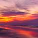 201905 Seabrook Island-02526.jpg